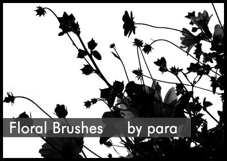 Floral Brushes by GMpara