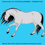 Grey Stalliong