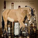 Irristable Drink EEE Stallion TB