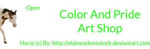 Color And Pride's Art Shop