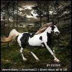 Equiverse Avatar PVR by Littlekitty09