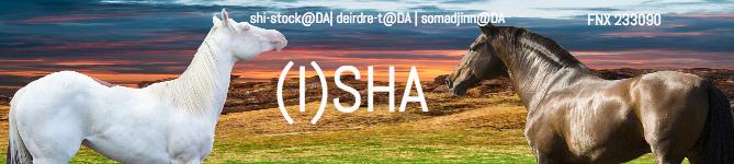 ISHA_Club_Banner by Littlekitty09