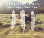 Feathers - Brushes