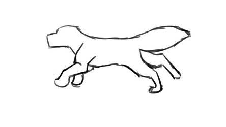 canine run cycle animation test