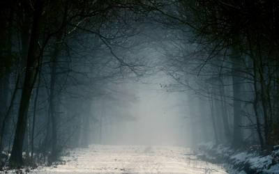 Misty Way Wallpaper.