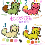 Adopte for own fruity cat! :OPEN: