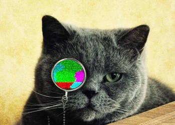 Static cat (.gif) by Feragor