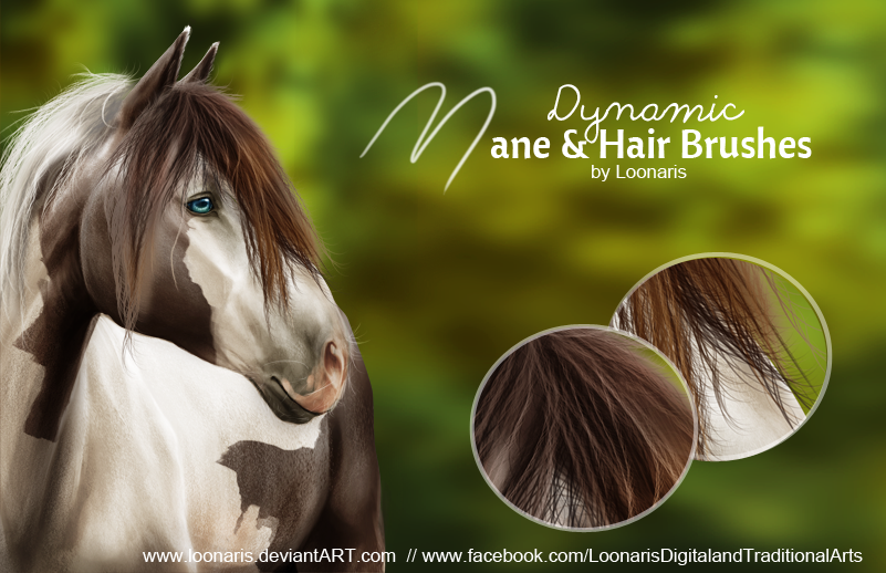 Dynamic MANE and HAIR Brushes for Photoshop