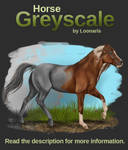 Horse Greyscale 01