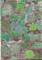 Lumpy Woods by tijodaslim