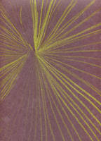 Solar Ray Flares by tijodaslim