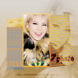 +CL Photopack
