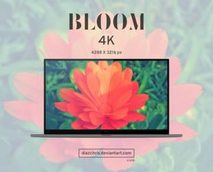 Bloom by diazchris