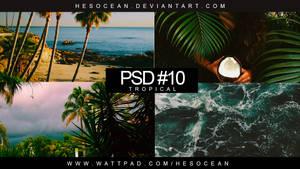 PSD #10 - TROPICAL