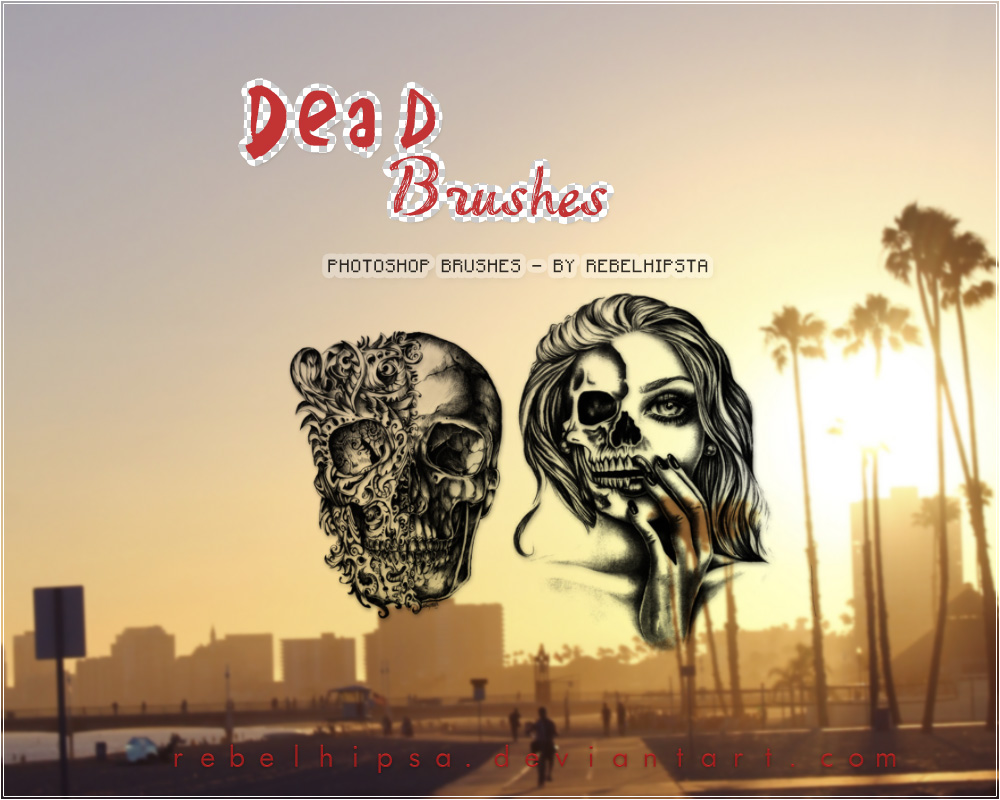 Dead Brushes by silly-luv