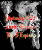 Smoke Brushes for Photoshop CS by SEspider
