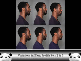 ViB Profile Sets 2 and 3 by Ahrum-Stock