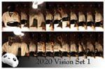 2020 Vision Set 1