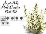 Angela3D Plant Brushes Set 2