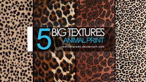 5 Textures: animal print