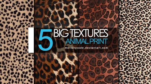 5 Textures: animal print by mercurycode