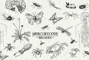Brushset 03: biology by mercurycode