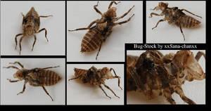 Bug_Stockpack