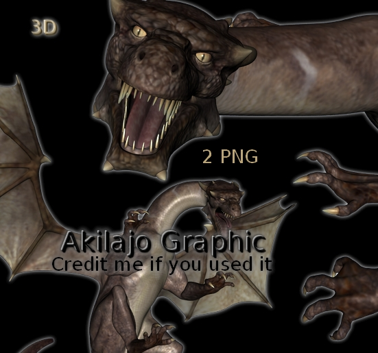 2 Dragons PNG #004 by AkilajoGraphic