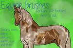 Equine brushes | +8 NEW BRUSHES