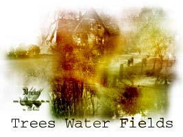 Trees Water Fields by Nexus-Of-Dreams