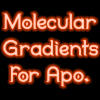 Molecular Gradients by InfiniteIterations