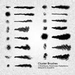 Cluster Brushes