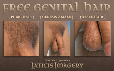 Laticis Imagery FREE - G2Male Genital Hair by Laticis