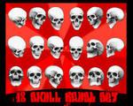 18 skull brushes