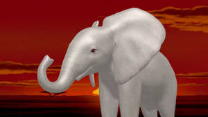 Baby Elephant MMD Download