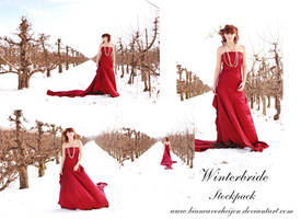 Winterbride stockpack 21pc by PumpkinPhotography