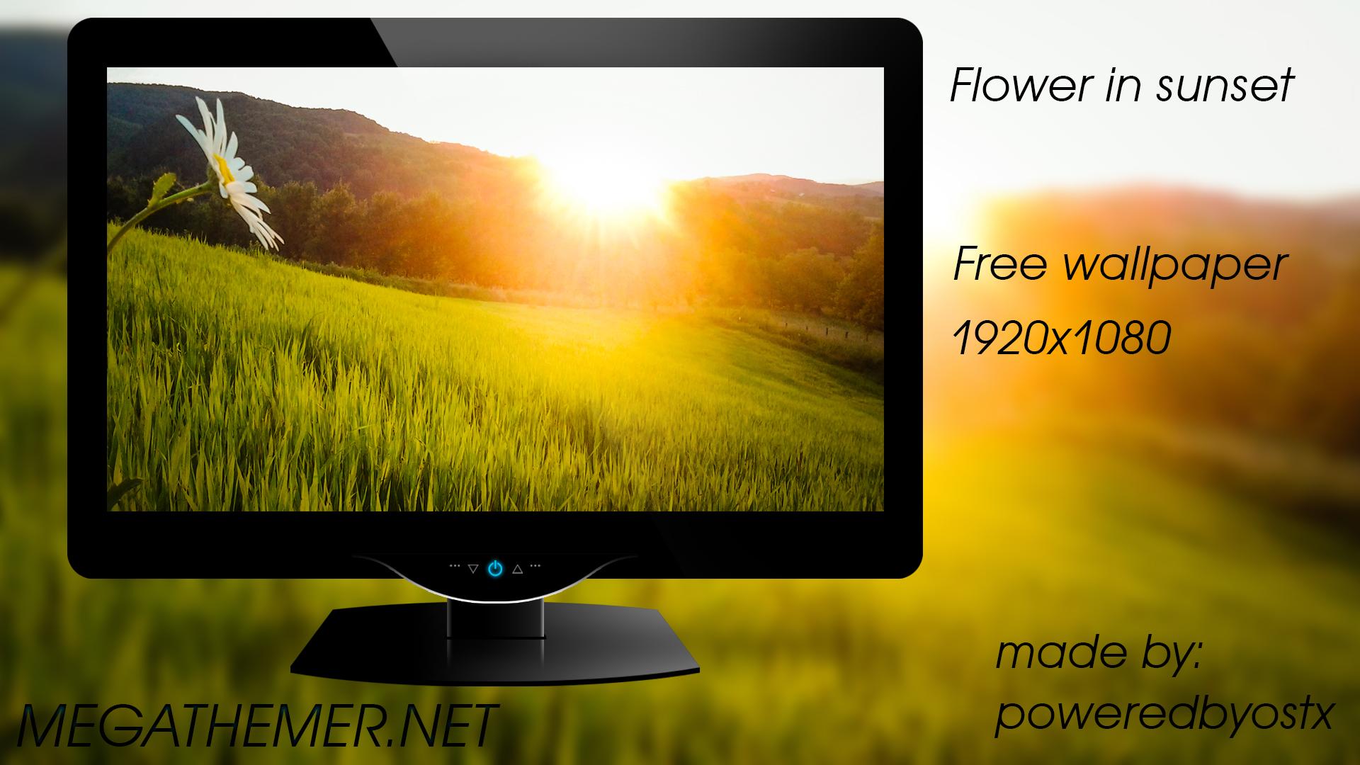 Flower in sunset by poweredbyostx