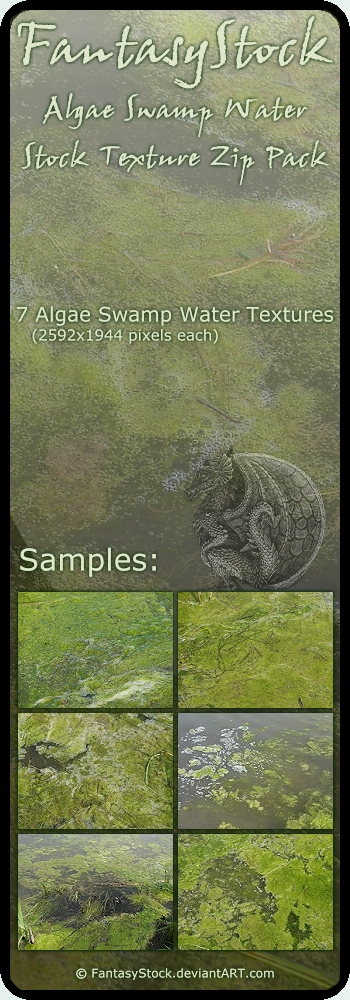 Algae Swamp Water Textures 4