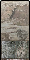 Tree Bark Textures Zip Pack 4