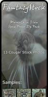 Mountain Lion Stock Zip Pack