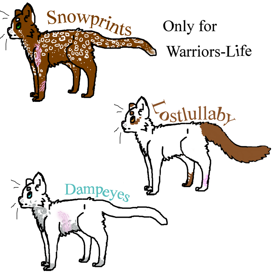 How To Write A Mary Sue Warrior Cats