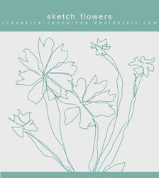 Flowers .4