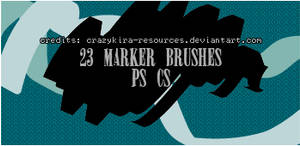 marker brushes