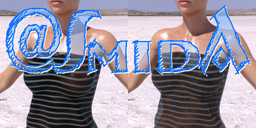 Smida - Freebie - Wet-Fantasy-Shader
