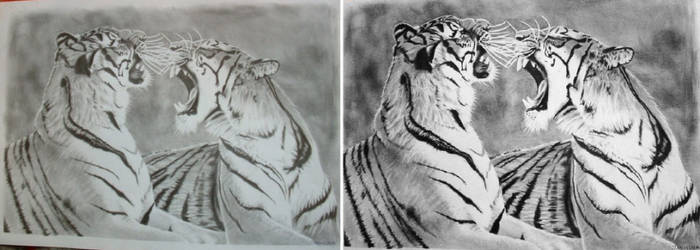 How to edit a scanned drawings by JasminaSusak