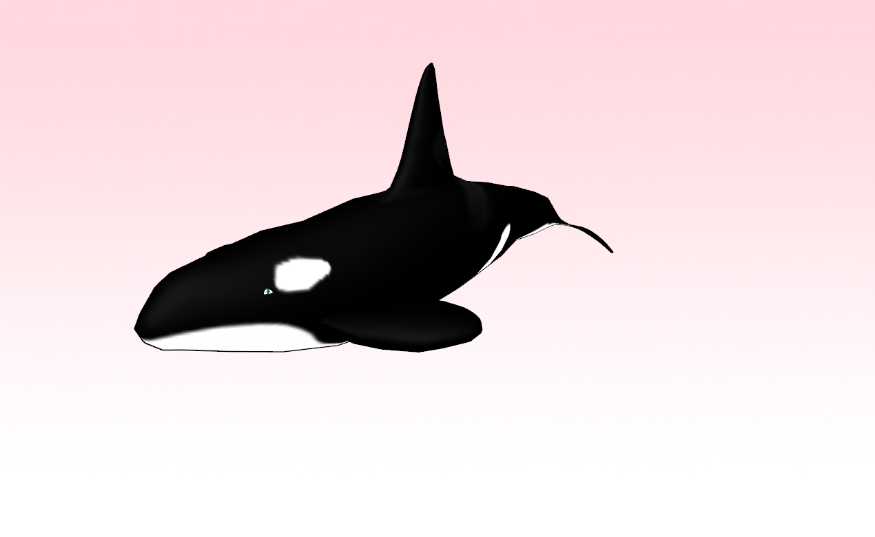 mmd shamu killer whale by amiamy111 on deviantart