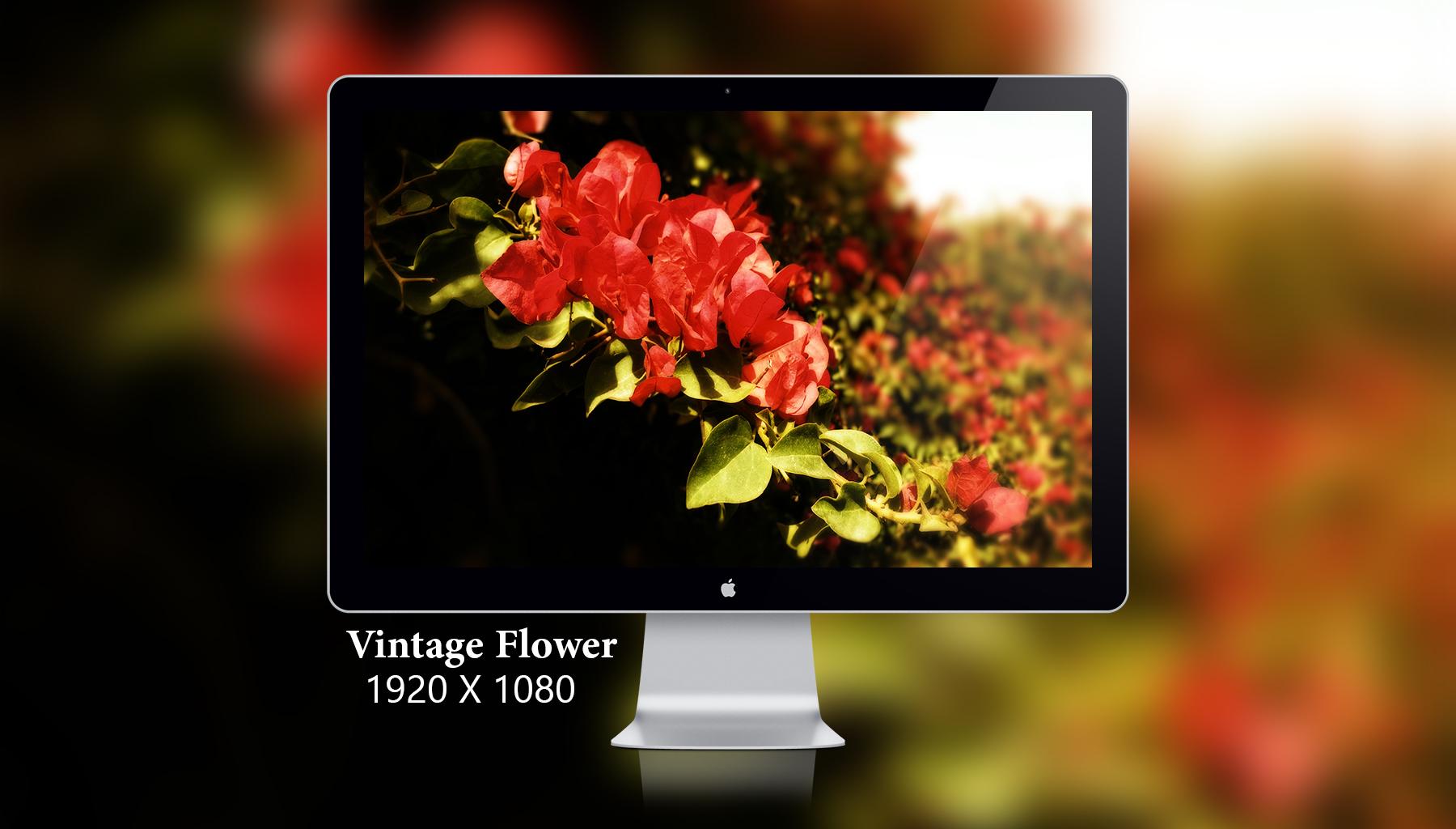 Vintage Flower by Del-Korey