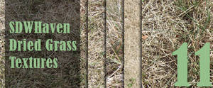 Dried Grass Texture Pack of 11