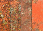Rust, Moss, And Metal Textures