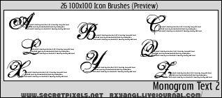 26:100x100 Monogram 2 Brushes